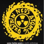 Ned's Atomic Dustbin blasts out punk assault