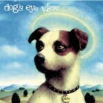 Daisy:  Dog's Eye View