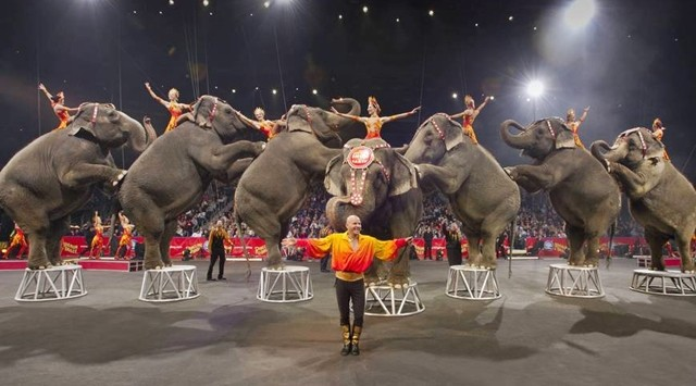 Ringling Bros. and Barnum & Bailey Circus (2000)