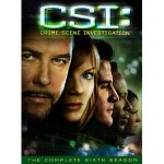 """CSI: Crime Scene Investigation"" — Season 6"