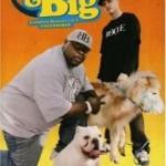 """""""Rob & Big"""": Seasons 1 and 2"""