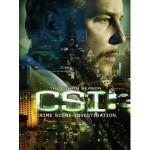 """""""CSI: Crime Scene Investigation"""" — 8th Season"""
