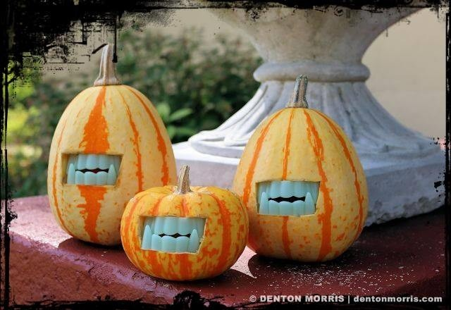 Gourds with fangs? Yes, please!